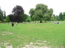 2006-05-14-parc-rothschild-07
