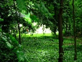 2006-05-14-parc-rothschild-39