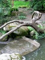 2006-05-14-parc-rothschild-68