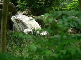 2006-05-14-parc-rothschild-82