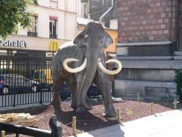 2005-09-17-natural-history-001