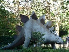 2005-09-17-natural-history-003