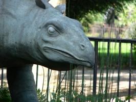 2005-09-17-natural-history-005