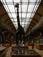 2005-09-17-natural-history-075