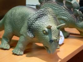 2005-09-17-natural-history-097