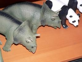 2005-09-17-natural-history-098