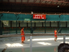 thailand-066