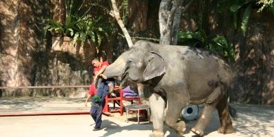 Thailand - 156